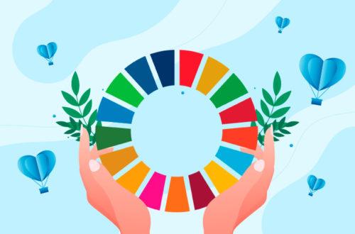 O papel das ONGs nas metas globais das Nações Unidas